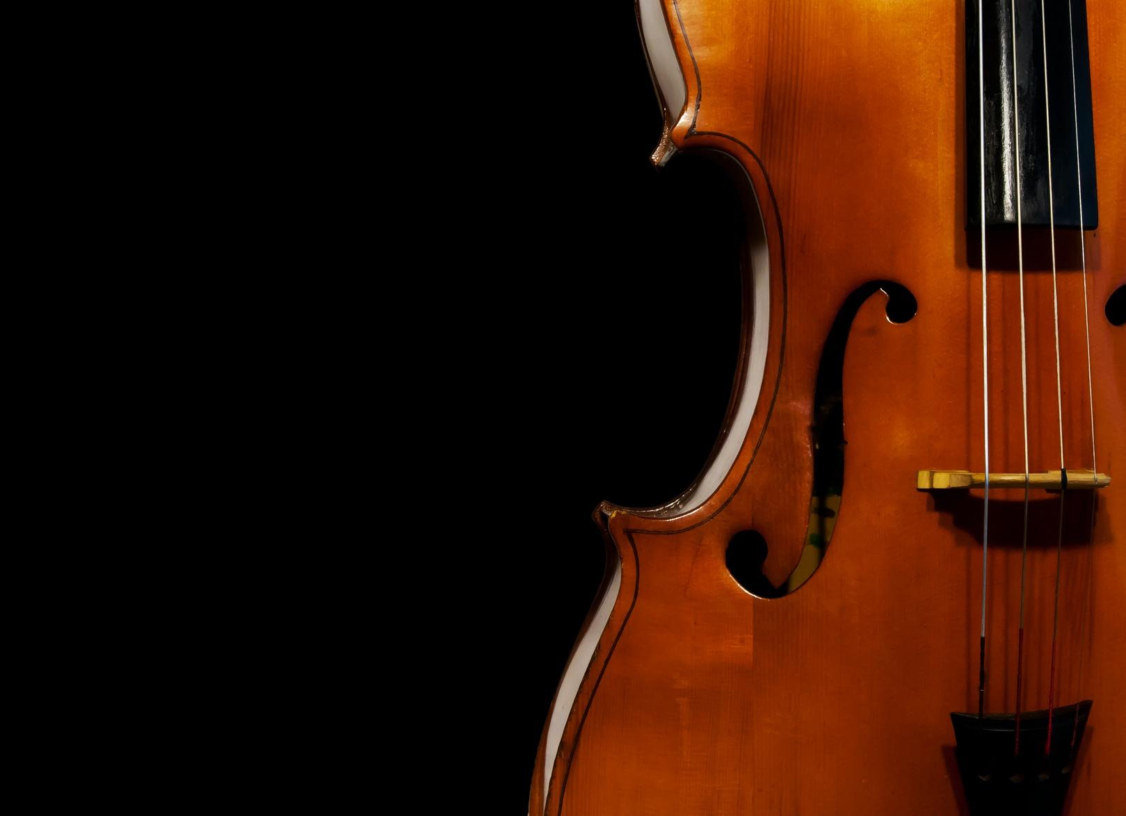 Geige - Musikunterricht