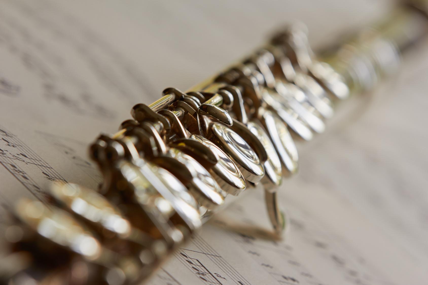 Querflöte - Flöte Musikunterricht