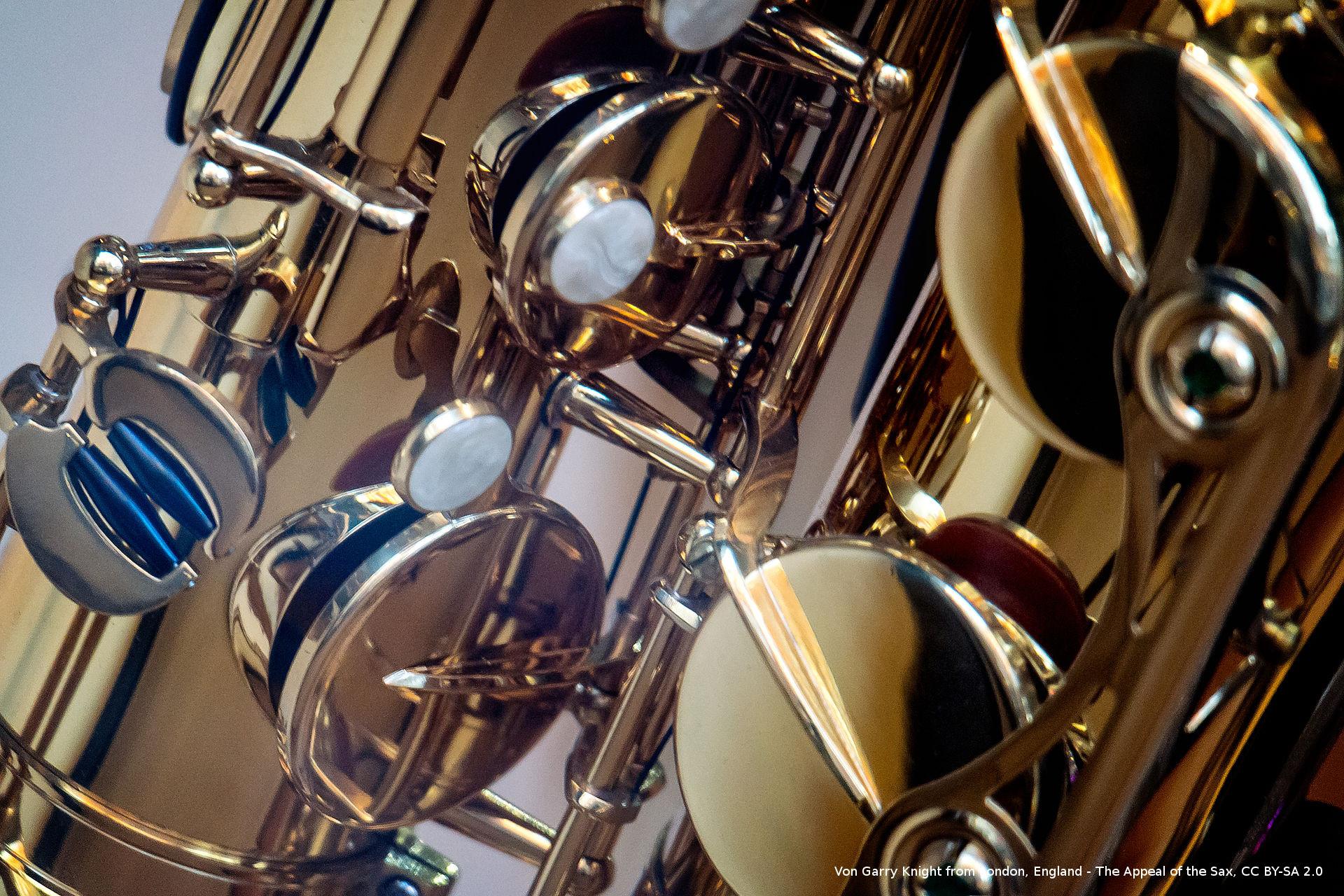Karinette und Saxophon - Musikunterricht